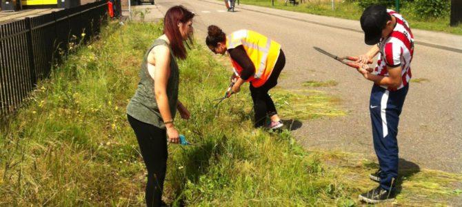 Het Groene Spoor krijgt weer hulp van MBO-studenten