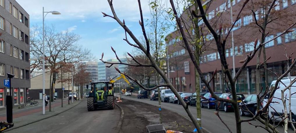 Stem op ons Kern met Pit project: Piet Mondriaanlaan wordt Klimaatlaan